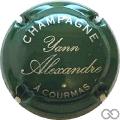 Champagne capsule 6 Vert et argent
