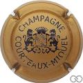 Champagne capsule 1.d Caramel et noir