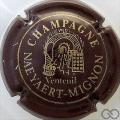 Champagne capsule 2 Marron et or pâle