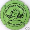 Champagne capsule 29.g Vert pomme et noir