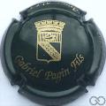 Champagne capsule 24 Vert foncé et or