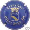 Champagne capsule 17 Bleu