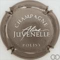 Champagne capsule 5.a Nickel et blanc, petit lettres