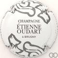 Champagne capsule  Blanc, gris et marron