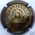 Champagne capsule 10.j Marron et or
