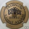Champagne capsule 3 Bronze