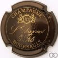 Champagne capsule 8 Marron