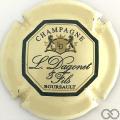Champagne capsule 12 Crème et vert foncé