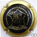 Champagne capsule 1 Noir, contour or