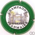 Champagne capsule 8 Nabuchodonosor, vert