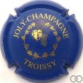 Champagne capsule 4 Bleu