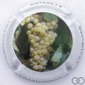 Champagne capsule 847.a Chardonnay