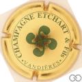 Champagne capsule 2 Or et vert