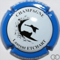 Champagne capsule 53.d Contour bleu