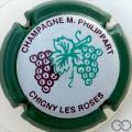 Champagne capsule 41 Contour vert
