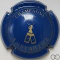 Champagne capsule 2 Bleu et or