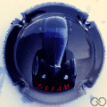 Champagne capsule A38 Dream