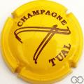 Champagne capsule A1 Jaune foncé et marron
