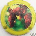 Champagne capsule 16.a Contour vert-jaune