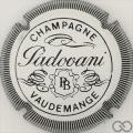 Champagne capsule 7.a Blanc et noir, stries épaisses