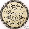 Champagne capsule 6 Crème et noir, striée