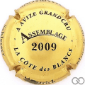 Champagne capsule 9.d Assemblage, 2009, or verso blanc