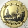 Champagne capsule 33 Or et noir
