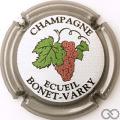 Champagne capsule  Contour gris, sans cercle
