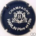 Champagne capsule 1 Bleu foncé et métal