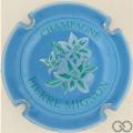 Champagne capsule 28 Bleu