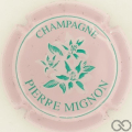 Champagne capsule 27 Rose