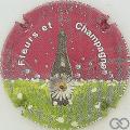 Champagne capsule 5 Fond bordeaux, 2009