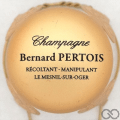 Champagne capsule 12 Parure